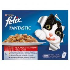 Felix Fantastic Karma dla dorosłych kotów wiejskie smaki w galaretce 1200 g (12 x 100 g)